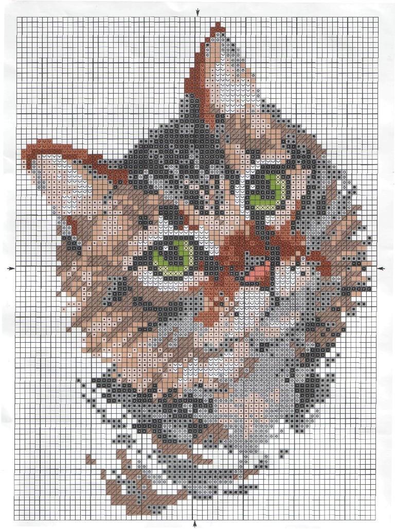 Схема вышивки сибирский кот 36