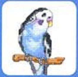 Схема вышивания крестом - Голубой попугай