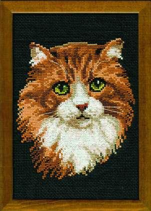 крестом - Рыжий кот
