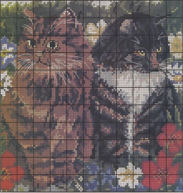 Схема вышивания бисером - Кот с кошкой