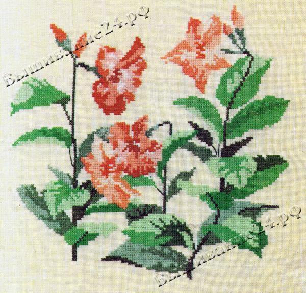 Схема вышивания крестом - Дипладения, цветы