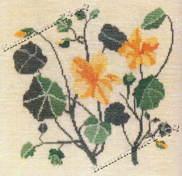 Схема вышивания крестом - Настурция, цветы