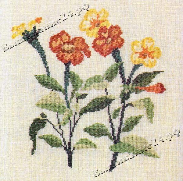 Схема вышивания крестом - Титония, цветы