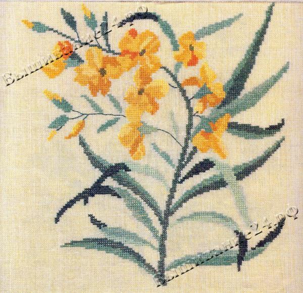 Схема вышивания крестом - Желтофиоль, цветы