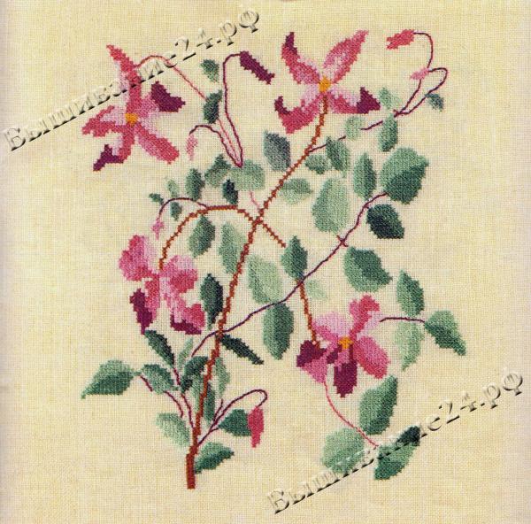 Схема вышивания крестом - Ломонос, цветы
