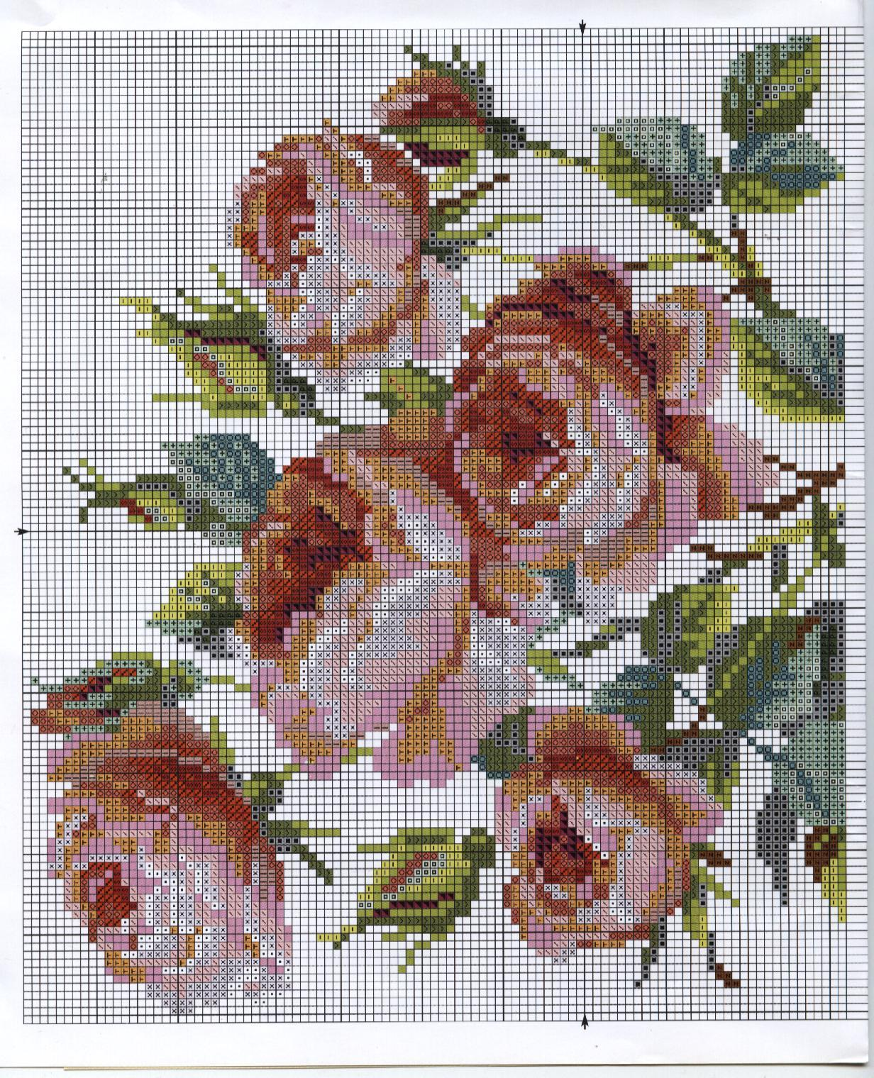 Вышивка крестом розы садовые схема